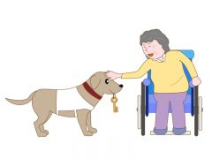 車椅子の牽引